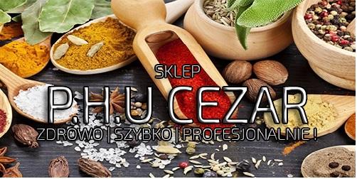 P.H.U. CEZAR