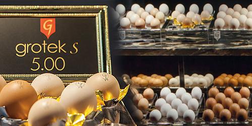 Grotek Bracia-luksusowa marka jajek