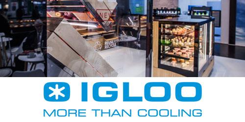 IGLOO MORE THAN COOLING